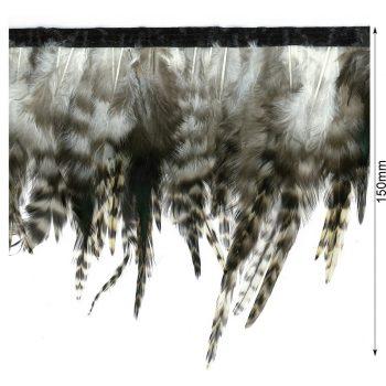 Franges plumes de coq   150mm