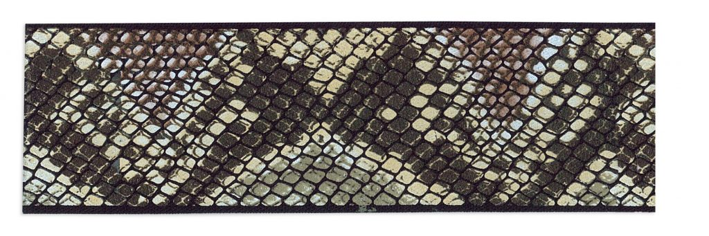 Elastique peau de serpent    30mm à 50mm