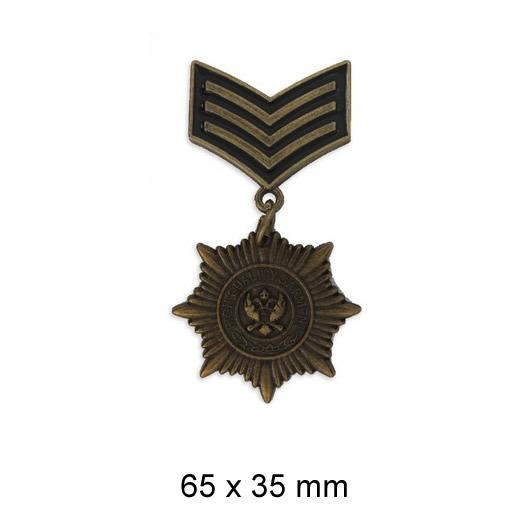 Broche insigne militaire
